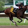 Peter Pan Stakes, Saturday May 10th