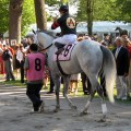 Travers Stakes, Saturday August 29th