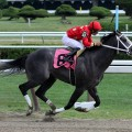 Jim Dandy Stakes, Saturday July 26th