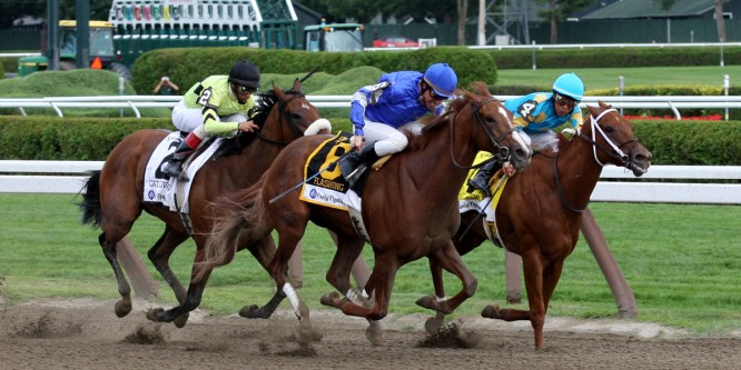 The Gotham Stakes, Saturday March 1st